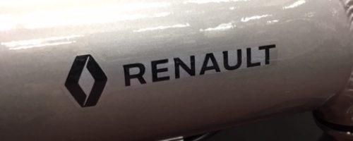 電車でお持ち帰りオッケ! RENAULT Platinum Light 6